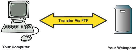 The Way to Use FTP Software